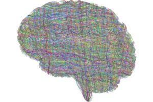 Avaliação e Intervenção na Deficiência Mental